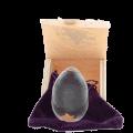 Tachyon Egg